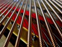 Piano_strings_Frank_Schramm