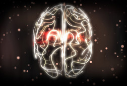 Brain_visualization_from_Lost_and_Sound